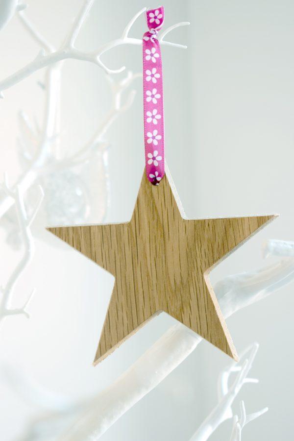 Christmas Decoration - Star